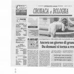 eCare_Informazione_14luglio2011