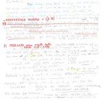 scheda manoscritta (7)