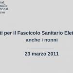 fse-2011